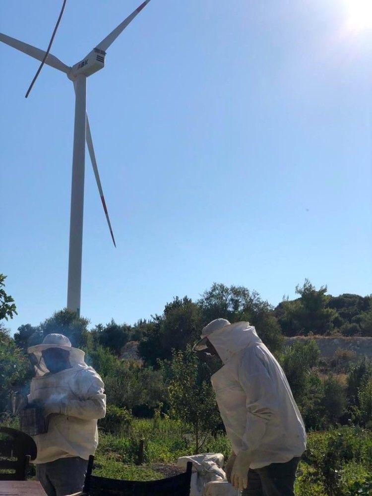 2019/08/ruzgar-enerji-santralinde-dogal-bal-uretimi-20190830AW78-1.jpg