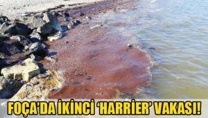 FOÇA'DA İKİNCİ 'HARRİER' VAKASI!