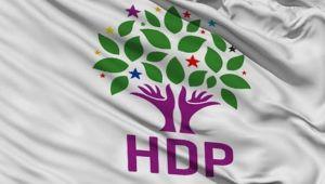 HDP eski İl Başkanı, PKK'lılarla işbirliğinden tutuklandı