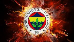 Fenerbahçe'de Nando De Colo'dan kötü haber!