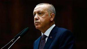 Cumhurbaşkanı Erdoğan'dan 'filtresiz baca vetosu' hakkında açıklama