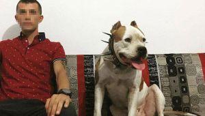 Köpek çiftliğine ceset gömerken yakalanmıştı! Başsavcılıktan açıklama…