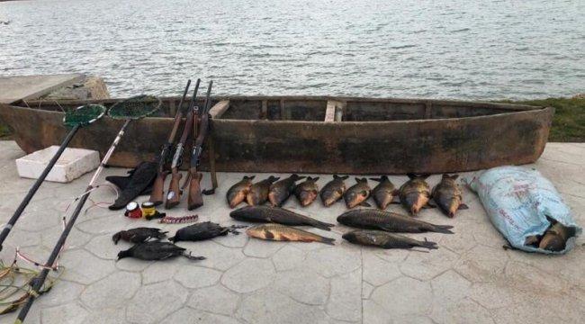 Elektroşokla balık avına para cezası