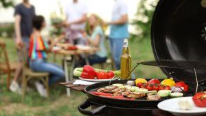 Piknik ve mangala yasaklandı