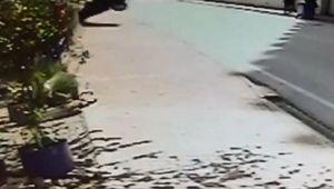 Evinin bahçesine otomobil düştü