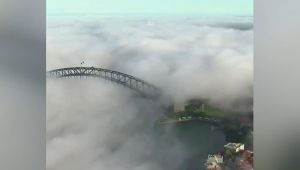 Avustralya'nın Sidney şehri sis altında kaldı