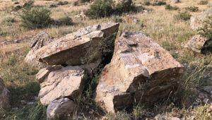 Kayaların içinde bulduğu yaprak fosillerinin incelenmesini istiyor