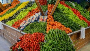 Rusya'ya yaş meyve sebze ihracatında artış