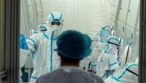 Çin'de yeni virüs alarmı