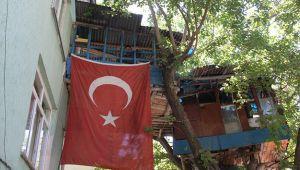 Nusret dede, Covid-19'dan ağaç evi ile korunuyor