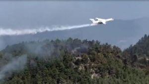 Sinop'taki orman yangını kontrol altında