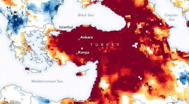 WWF'den Türkiye'ye uyarı