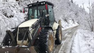 Kardan dolayı 101 köy ve mahalle yolu kapandı