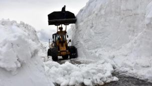 Nemrut'taki kar tünelleri, iş makinelerinin boyunu aştı