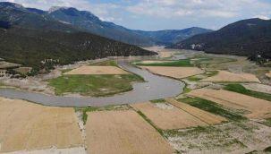 Gölde sular çekildi, tarım arazisine döndü