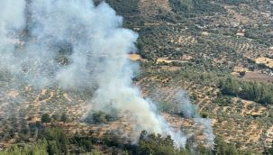 Muğla'da çıkan 10 yıldırım yangını büyümeden söndürüldü