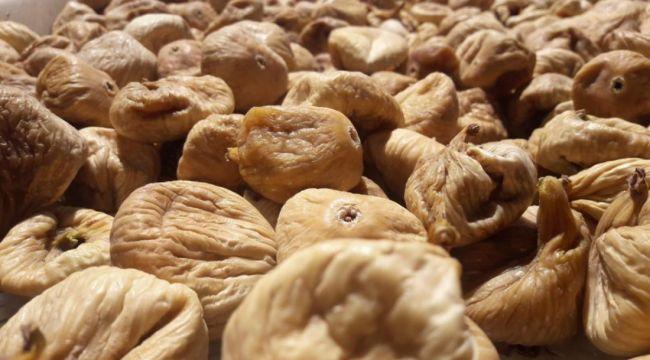 Kuru incir ihracatında 256 milyon 915 bin dolarlık döviz geliri elde edildi